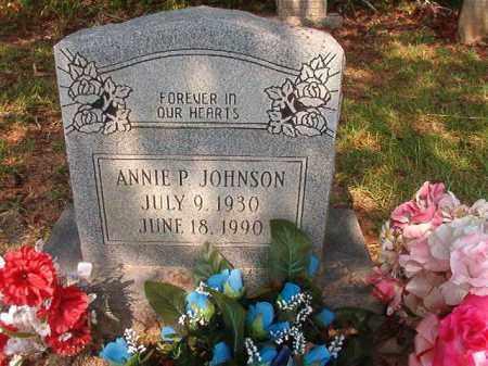 JOHNSON, ANNIE P - Union County, Arkansas   ANNIE P JOHNSON - Arkansas Gravestone Photos