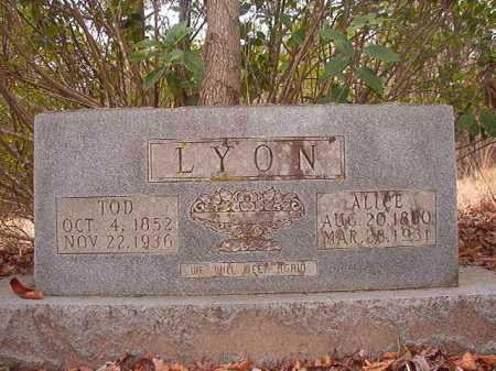 LYON, ALICE - Union County, Arkansas | ALICE LYON - Arkansas Gravestone Photos