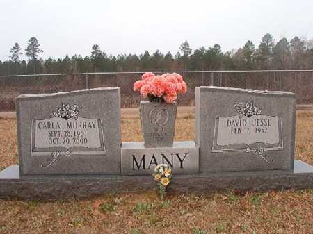 MANY, CARLA - Union County, Arkansas | CARLA MANY - Arkansas Gravestone Photos