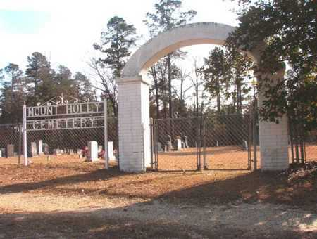 *MOUNT HOLLY CEMETERY, GATE - Union County, Arkansas   GATE *MOUNT HOLLY CEMETERY - Arkansas Gravestone Photos