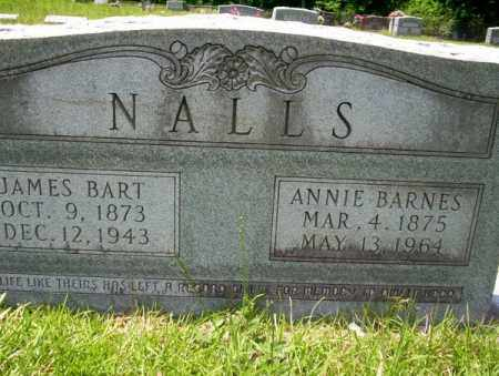 BARNES NALLS, ANNIE - Union County, Arkansas | ANNIE BARNES NALLS - Arkansas Gravestone Photos