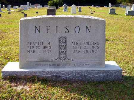 NELSON, CHARLIE M. - Union County, Arkansas | CHARLIE M. NELSON - Arkansas Gravestone Photos