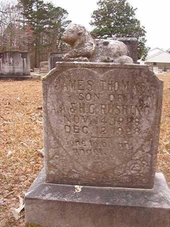 RUSHING, JAMES THOMAS - Union County, Arkansas | JAMES THOMAS RUSHING - Arkansas Gravestone Photos