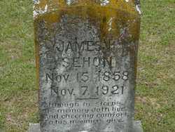 SEHON, JAMES - Union County, Arkansas   JAMES SEHON - Arkansas Gravestone Photos