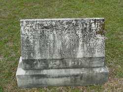 WATSON SEHON, PHOEBE - Union County, Arkansas | PHOEBE WATSON SEHON - Arkansas Gravestone Photos