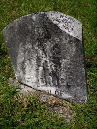 STOCKS, THESSIE FLORICE - Union County, Arkansas | THESSIE FLORICE STOCKS - Arkansas Gravestone Photos