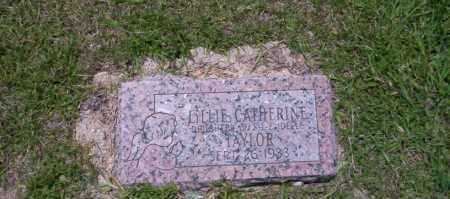 TAYLOR, LILLIAN CATHERINE - Union County, Arkansas | LILLIAN CATHERINE TAYLOR - Arkansas Gravestone Photos