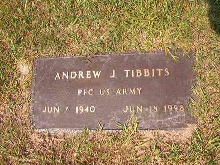 TIBBITS (VETERAN), ANDREW J - Union County, Arkansas   ANDREW J TIBBITS (VETERAN) - Arkansas Gravestone Photos