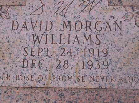 WILLIAMS, DAVID MORGAN - Union County, Arkansas | DAVID MORGAN WILLIAMS - Arkansas Gravestone Photos