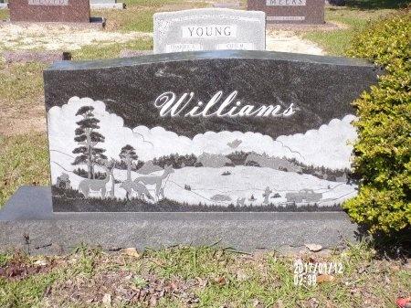 WILLIAMS, FAMILY PLOT - Union County, Arkansas | FAMILY PLOT WILLIAMS - Arkansas Gravestone Photos