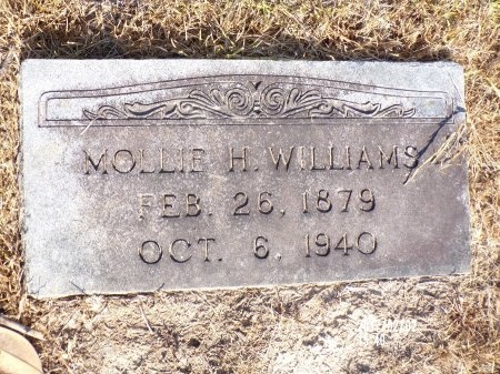 WILLIAMS, MOLLIE H - Union County, Arkansas | MOLLIE H WILLIAMS - Arkansas Gravestone Photos