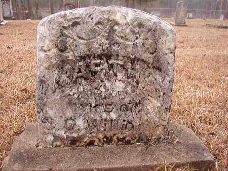 WILLIAMS, MARTHA - Union County, Arkansas | MARTHA WILLIAMS - Arkansas Gravestone Photos