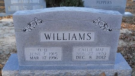 WILLIAMS, CALLIE MAE - Union County, Arkansas | CALLIE MAE WILLIAMS - Arkansas Gravestone Photos