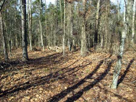 *ROAD,  - Van Buren County, Arkansas    *ROAD - Arkansas Gravestone Photos