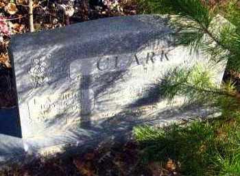 CLARK, L A - Van Buren County, Arkansas | L A CLARK - Arkansas Gravestone Photos