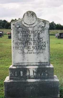 "COLLUMS, KATHERINE J.  ""KATE"" - Van Buren County, Arkansas | KATHERINE J.  ""KATE"" COLLUMS - Arkansas Gravestone Photos"