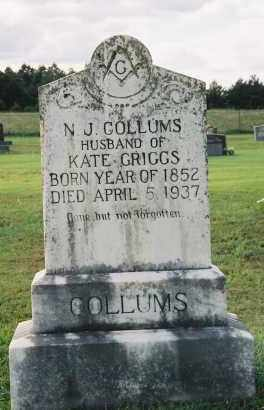 COLLUMS, NEWTON JASPER - Van Buren County, Arkansas | NEWTON JASPER COLLUMS - Arkansas Gravestone Photos