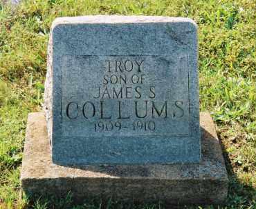COLLUMS, TROY - Van Buren County, Arkansas | TROY COLLUMS - Arkansas Gravestone Photos