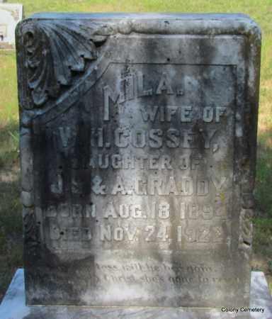 COSSEY, MILA - Van Buren County, Arkansas | MILA COSSEY - Arkansas Gravestone Photos