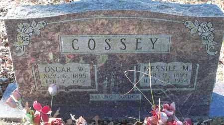 COSSEY, MESSILE MAGDALENE MARTINDALE - Van Buren County, Arkansas | MESSILE MAGDALENE MARTINDALE COSSEY - Arkansas Gravestone Photos
