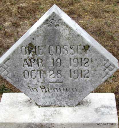 COSSEY, OPIE - Van Buren County, Arkansas   OPIE COSSEY - Arkansas Gravestone Photos