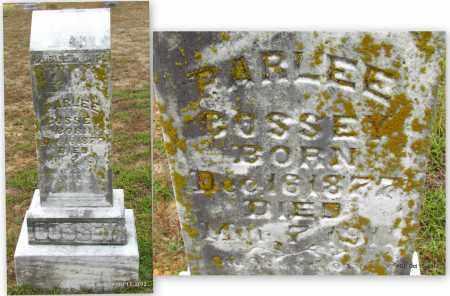 COSSEY, PARLEE - Van Buren County, Arkansas | PARLEE COSSEY - Arkansas Gravestone Photos