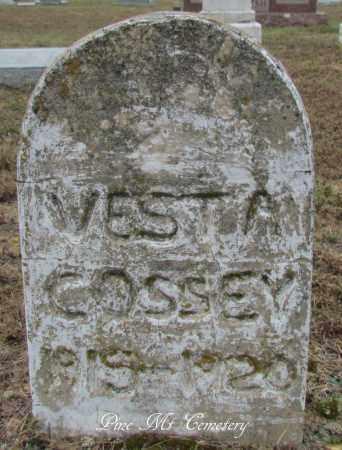 COSSEY, VESTA - Van Buren County, Arkansas | VESTA COSSEY - Arkansas Gravestone Photos