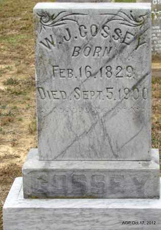 COSSEY, W J - Van Buren County, Arkansas | W J COSSEY - Arkansas Gravestone Photos