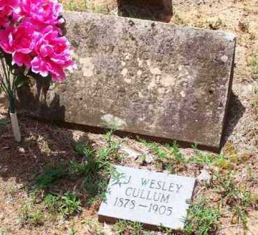 CULLUM, J  WESLEY - Van Buren County, Arkansas | J  WESLEY CULLUM - Arkansas Gravestone Photos