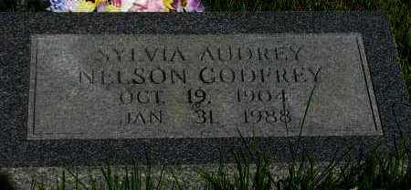 GODFREY, SYLVIA AUDREY - Van Buren County, Arkansas | SYLVIA AUDREY GODFREY - Arkansas Gravestone Photos
