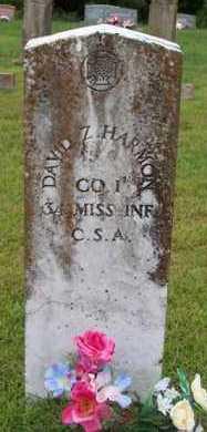 HARMON (VETERAN CSA), DAVID Z - Van Buren County, Arkansas | DAVID Z HARMON (VETERAN CSA) - Arkansas Gravestone Photos