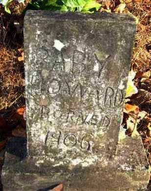 HOWARD, BABY - Van Buren County, Arkansas | BABY HOWARD - Arkansas Gravestone Photos