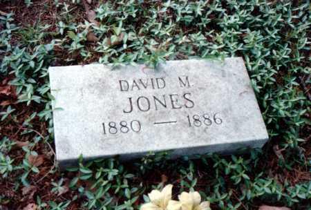 JONES, DAVID M. - Van Buren County, Arkansas | DAVID M. JONES - Arkansas Gravestone Photos