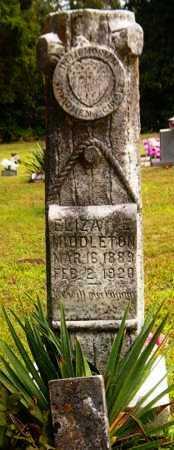 MIDDLETON, ELIZA E - Van Buren County, Arkansas | ELIZA E MIDDLETON - Arkansas Gravestone Photos