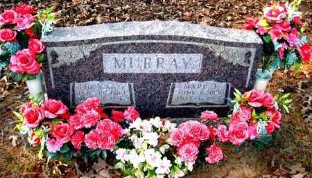 MURRAY, THOMAS E - Van Buren County, Arkansas | THOMAS E MURRAY - Arkansas Gravestone Photos