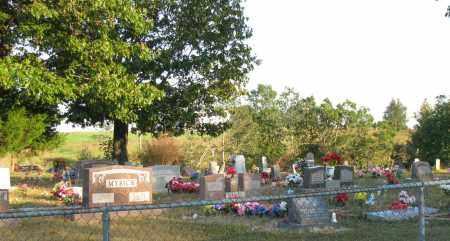 *OVERVIEW,  - Van Buren County, Arkansas |  *OVERVIEW - Arkansas Gravestone Photos