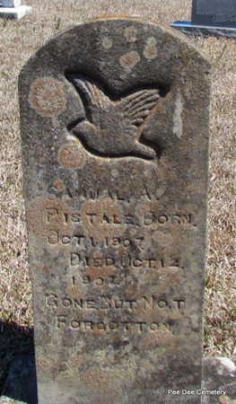 PISTOLE, SAMUEL A. - Van Buren County, Arkansas | SAMUEL A. PISTOLE - Arkansas Gravestone Photos