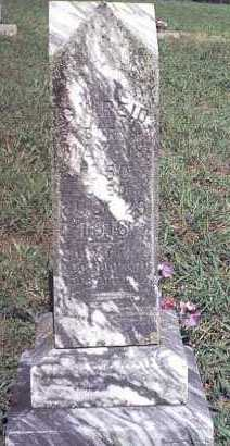 REID, G. W. - Van Buren County, Arkansas | G. W. REID - Arkansas Gravestone Photos
