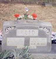 REID, MARY ANN - Van Buren County, Arkansas | MARY ANN REID - Arkansas Gravestone Photos