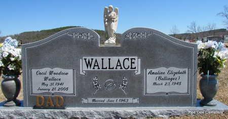 WALLACE, CECIL WOODROW - Van Buren County, Arkansas   CECIL WOODROW WALLACE - Arkansas Gravestone Photos