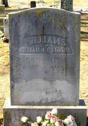 WILLIAMS, LOVINA - Van Buren County, Arkansas   LOVINA WILLIAMS - Arkansas Gravestone Photos