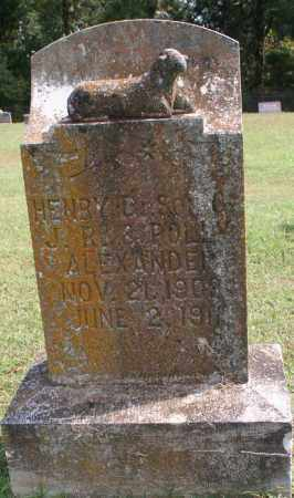 ALEXANDER, HENRY D. - Washington County, Arkansas | HENRY D. ALEXANDER - Arkansas Gravestone Photos