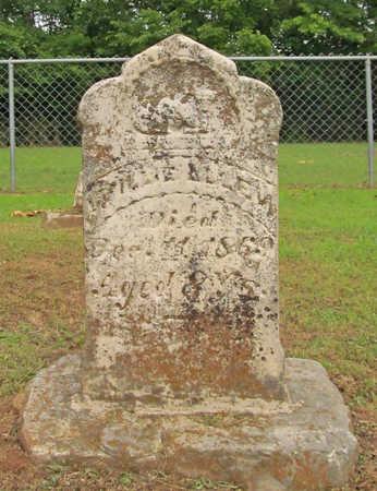 ALLEN, MILLIE - Washington County, Arkansas   MILLIE ALLEN - Arkansas Gravestone Photos
