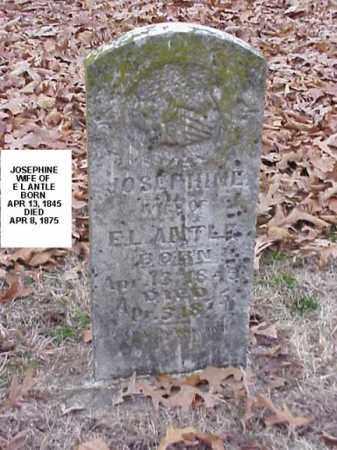 ANTLE, JOSPHINE - Washington County, Arkansas | JOSPHINE ANTLE - Arkansas Gravestone Photos