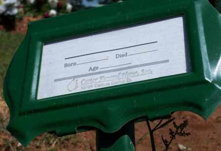 ARNETT, AILEEN - Washington County, Arkansas   AILEEN ARNETT - Arkansas Gravestone Photos