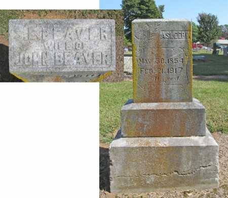 BEAVER, S. E. - Washington County, Arkansas | S. E. BEAVER - Arkansas Gravestone Photos