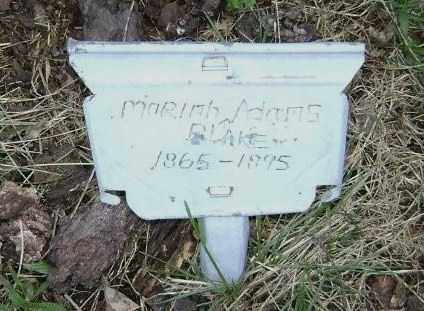 BLAKE, MARIAH - Washington County, Arkansas | MARIAH BLAKE - Arkansas Gravestone Photos