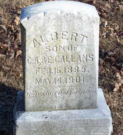 CALLANS, ALBERT - Washington County, Arkansas   ALBERT CALLANS - Arkansas Gravestone Photos