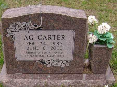 CARTER, A. G. - Washington County, Arkansas | A. G. CARTER - Arkansas Gravestone Photos