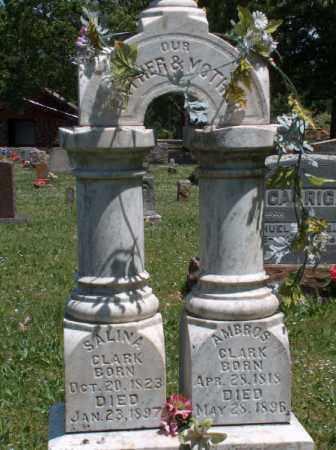 HASH CLARK, SALINA - Washington County, Arkansas | SALINA HASH CLARK - Arkansas Gravestone Photos